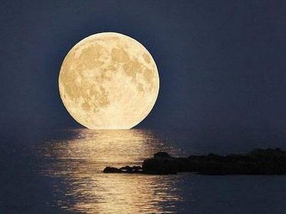 ¿Cómo vivieron los jerezanos la espectacular súper luna de ayer?